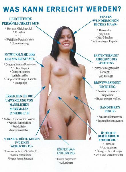 Hypophyse Hirnanhangdrse - Aufbau, Funktion und