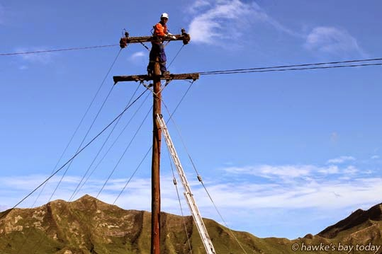 Kamlesh Narayan, a faultman with Unison, working to restore power after lines were broken by trees blown down by high winds on Heays Access Rd, a no exit road to the poular Boundary Stream and Shine Falls, Putorino, Northern Hawke's Bay. photograph
