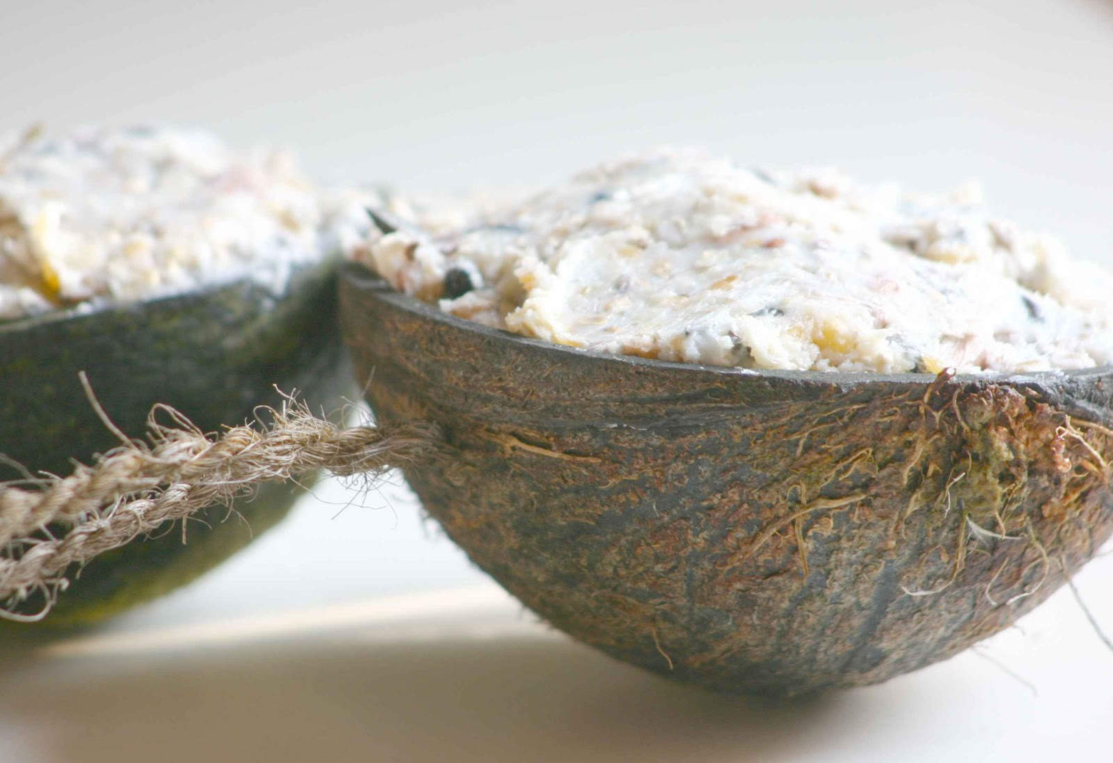 jennifer tetlow stone sculpture journal feeding birds in cold