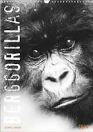 Berggorillas 2014