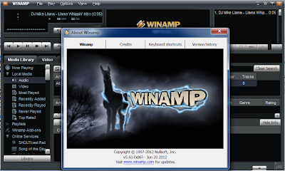 Winamp Pro 5.63 Full Serial 2