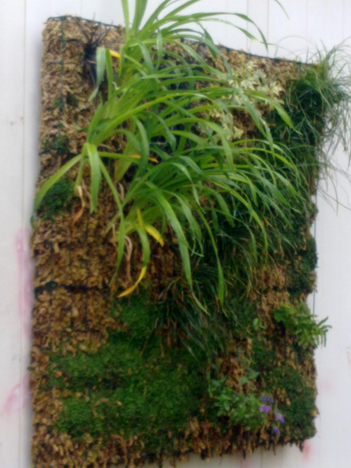 Arrels jardines verticales suministro de estructuras para for Caracteristicas de los jardines verticales