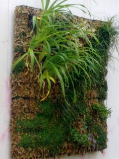 Arrels jardines verticales suministro de estructuras para for Estructura jardin vertical