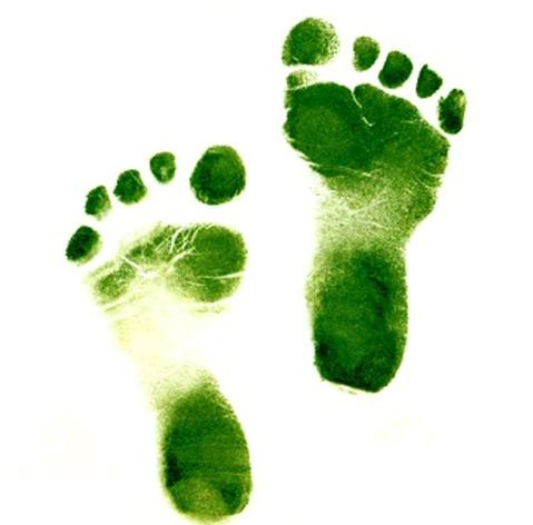 Leaving my footprints
