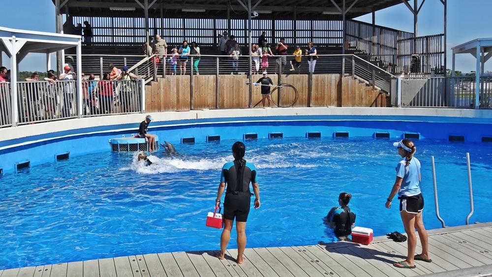 Gulfarium, Marine Adventure Park in Fort Walton Beach, Florida USA