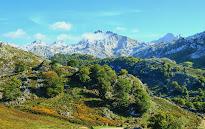 Monumentos naturales d'Asturies