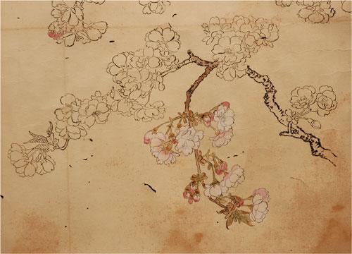 Pittura giapponese di shoko okumura aprile 2013 for Fiori di ciliegio dipinti