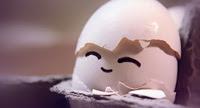 pantun-kelakar-lawak-jenaka-telur-menetas