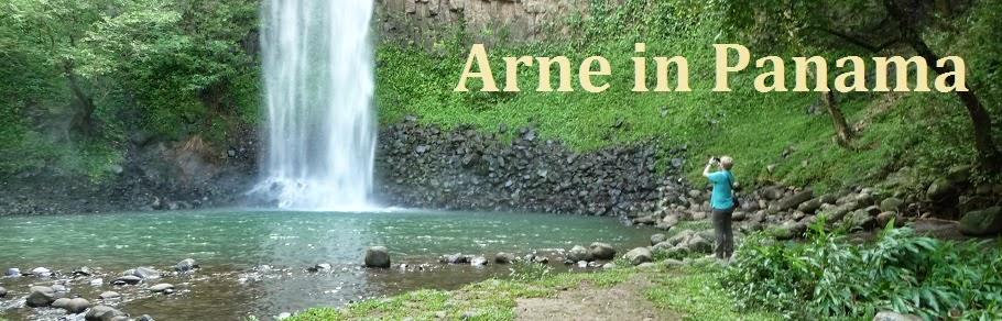 Arne in Panama