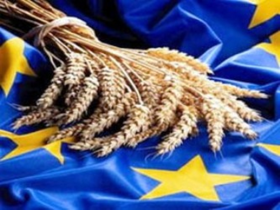 the eu common agricultural policy cap essay 1:1 why governments have often intervened in agricultural markets in the eu 1:2 extract b mentions 4 objectives of cap as mentioned in the treaty of rome these include i).