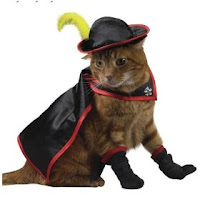 Puss In Boots Costume4