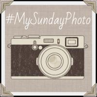 My Sunday Photo
