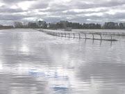 Inundacion en el Hipodromo Azul, provincia de Buenos Aires.