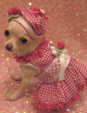 Dog Dresses