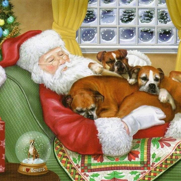 Navidad Vegan