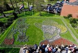 Quadro de Van Gogh feito com tulipas