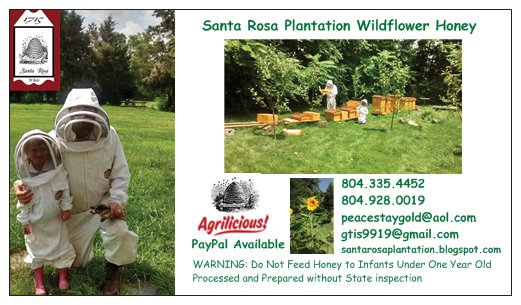 Santa Rosa Plantation Wildflower Honey