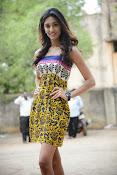 Erika Fernandez Glam pics-thumbnail-5