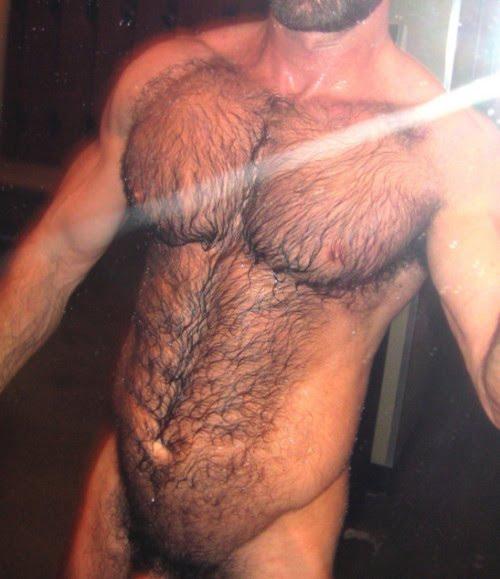 http://3.bp.blogspot.com/-XGTcBH2MTd0/T_gc7o3OG0I/AAAAAAABt4k/xsHbuqufj78/s1600/Hairy55j.jpg