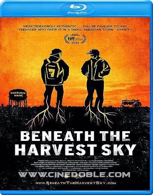 Beneath the Harvest Sky (2013) 1080p Español Subtitulado