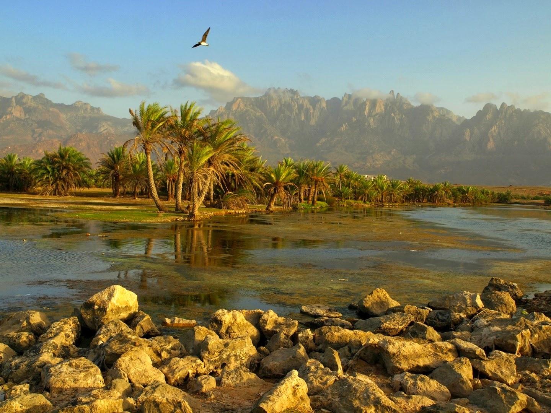 socotra+island+pulau+dajjal billyinfo4 Keanehan Pulau Socotra di Yemen, pulau Dimana DAJJAL Dirantai?