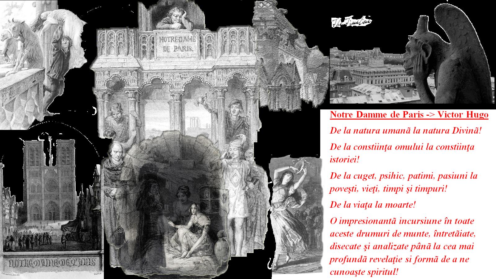 Notre Damme de Paris Victor Hugo Carte roman viata iubire credinta puritate Maria Teodorescu Bahnareanu Wrinkles on my Timeline