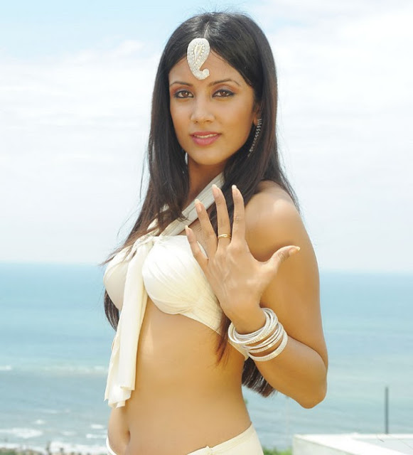 Actress Rithika Sood Hot Navel Show Photos