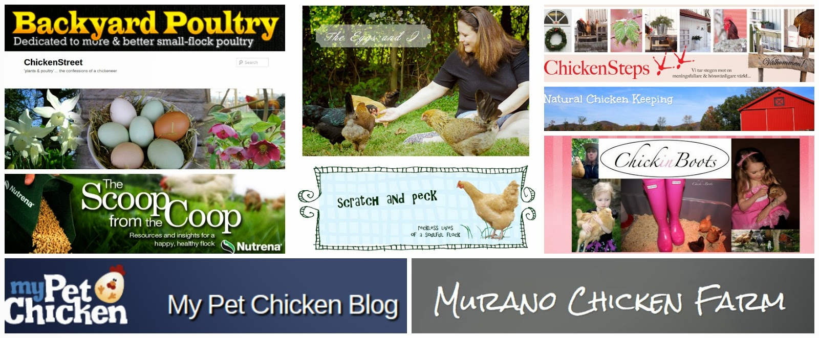 Backyard Chicken Blog my top ten favorite chicken blogs - the best of the best | fresh