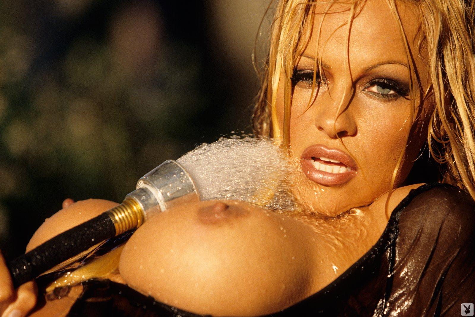 Pamela Anderson Anal Se