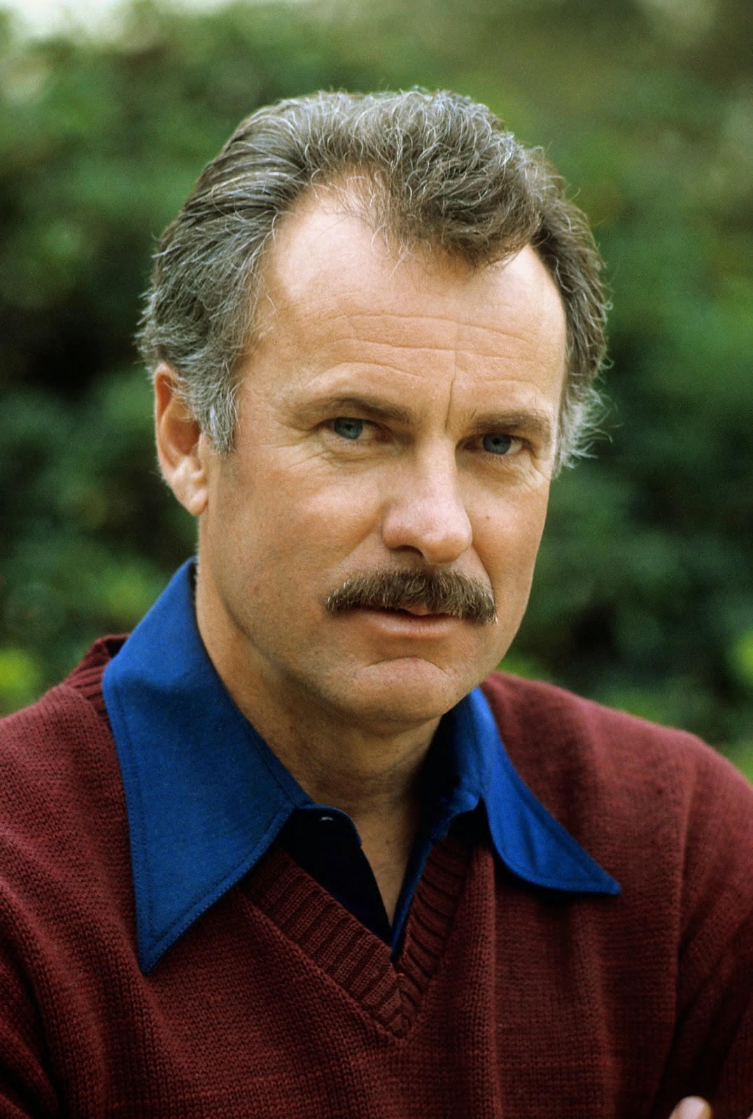 The Movies Of Dabney Coleman  Dabney Coleman