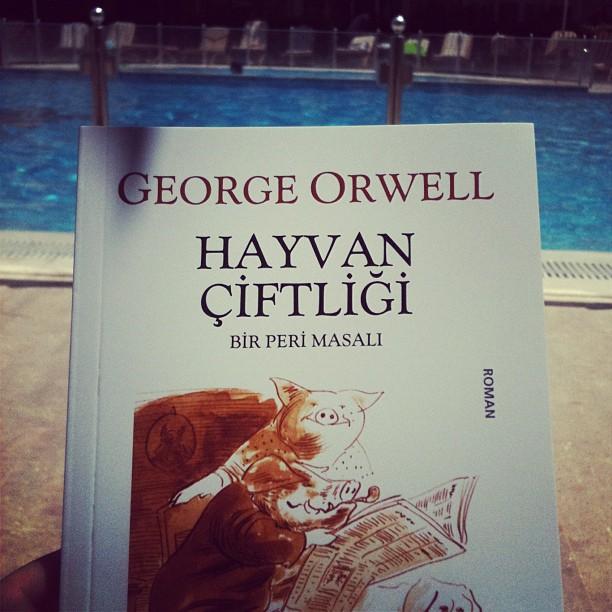 orwell essays ebook