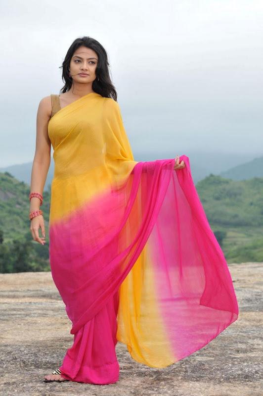 Nikitha Narayan Cool Saree Stills Nikitha Narayan Hot Saree Photos sexy stills