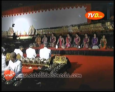 tv desa Viva Plus Berbayar Indonesia