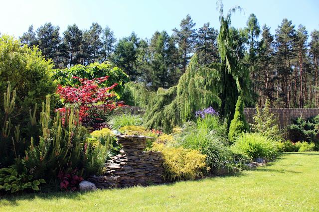 kaskada wodna w ogrodzie jak zrobić,skalniak w ogrodzie wspaniały i piękny,piękny ogró,najpiękniejszy ogró blog, dom inspiracje szczecin