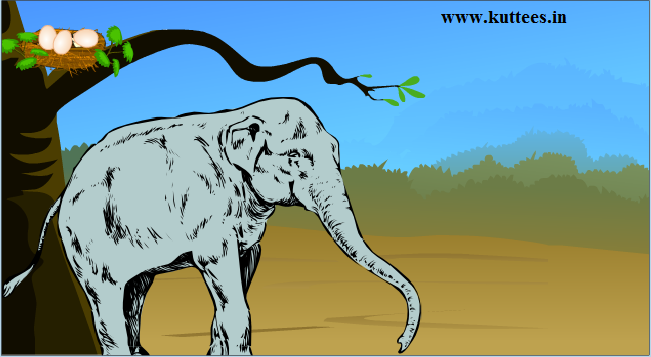 Kuttees.in: The Sparrow and the elephant - Panchatantra Story ...