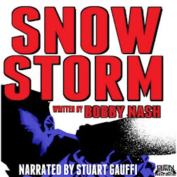 SNOW STORM AUDIO