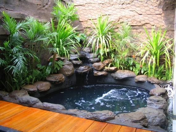 taman kolam ikan mungil