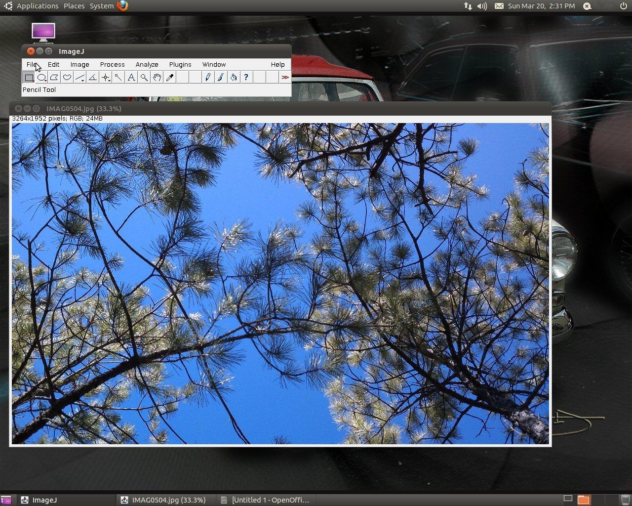 Imagej Software
