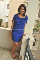 Payal, ghosh, hot, thigh, show, in, photo, shoot