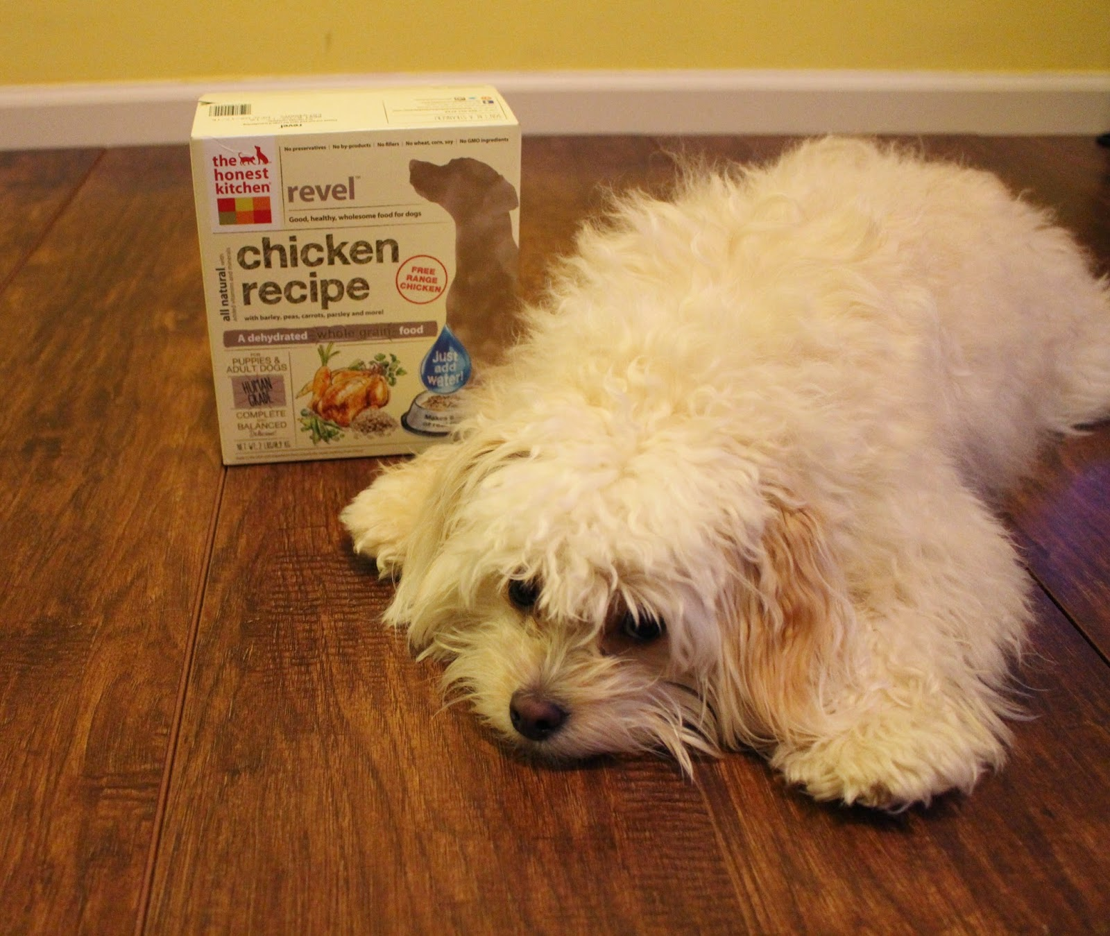 his muddy paw prints honest kitchen revel review and giveaway