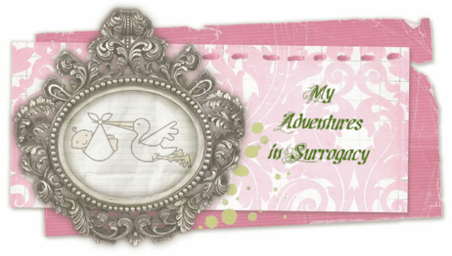 My Adventures in Surrogacy