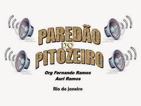 PAREDÃO DO PITOZEIRO - FERNANDO RAMOS