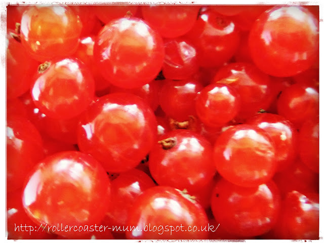 redcurrant jewels