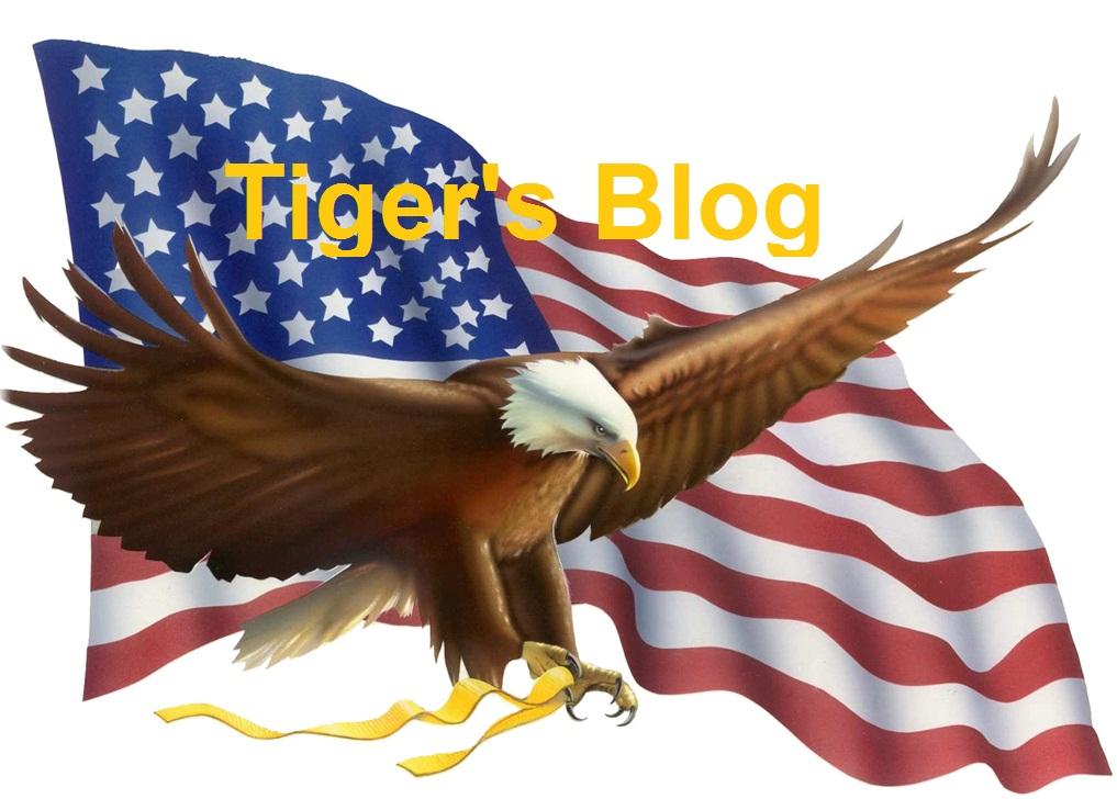 TIGER'S BLOG