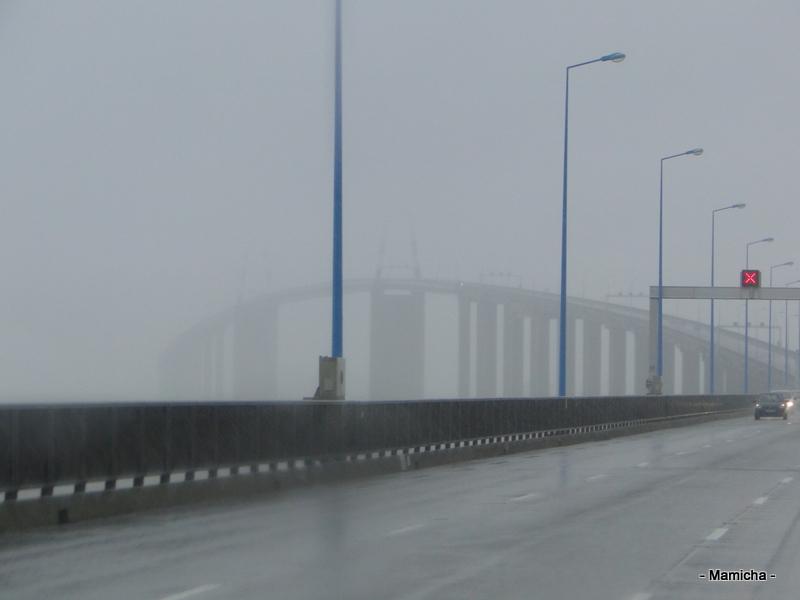 Le pont de Saint-Nazaire Oleron+2013+502