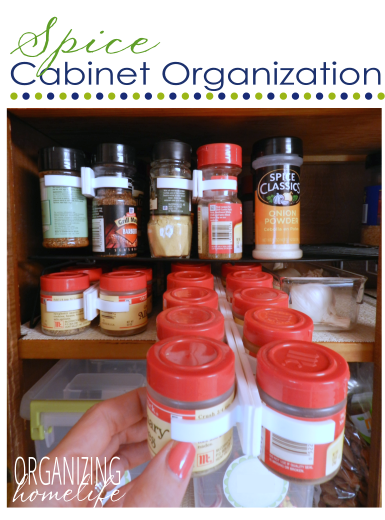 Spice clips to organize spices :: OrganizingMadeFun.com