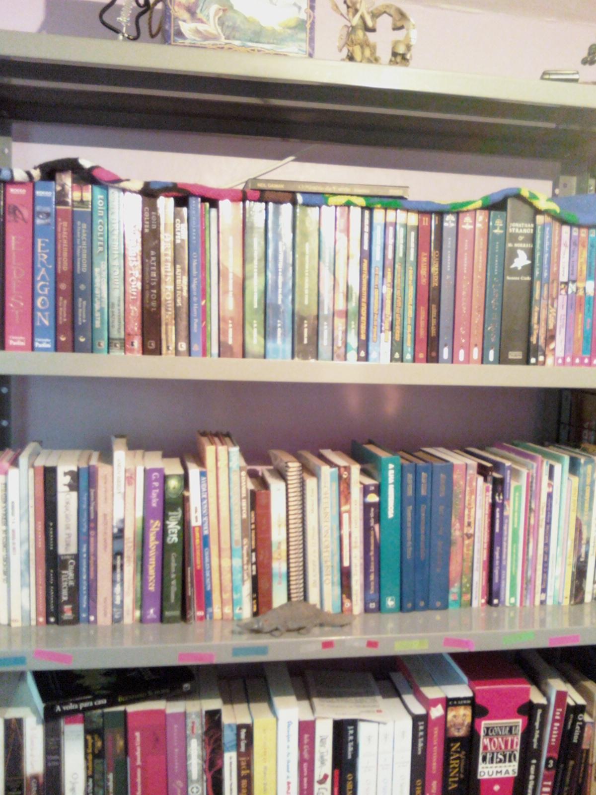Mundo de Fantas: Como cuidar dos livros – Parte 1 – armazenamento #3D7182 1200x1600
