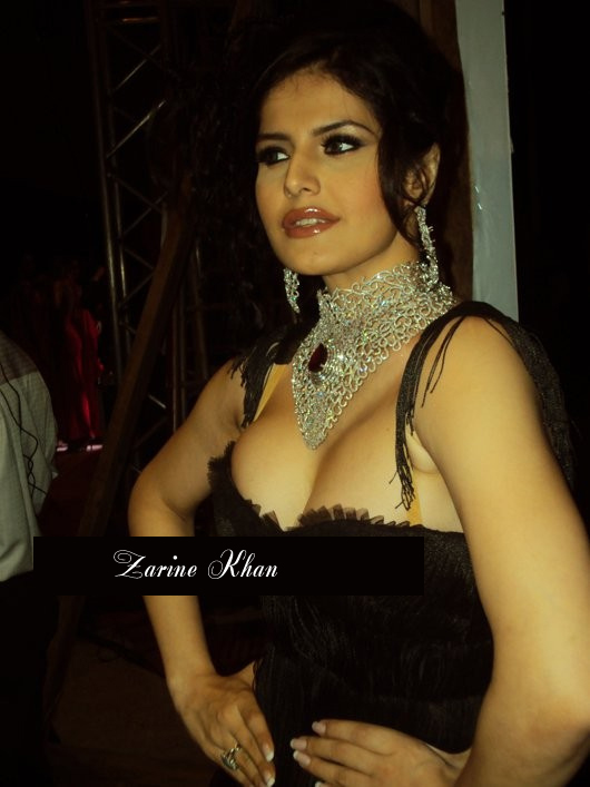 Zarine Khan Unseen hottest Photos