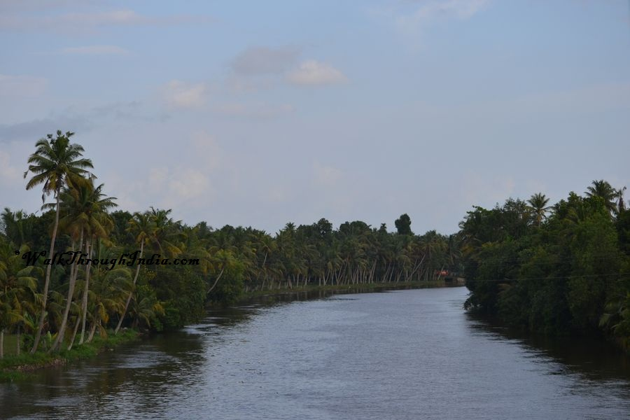 Brackish Lagoons - Alleppey