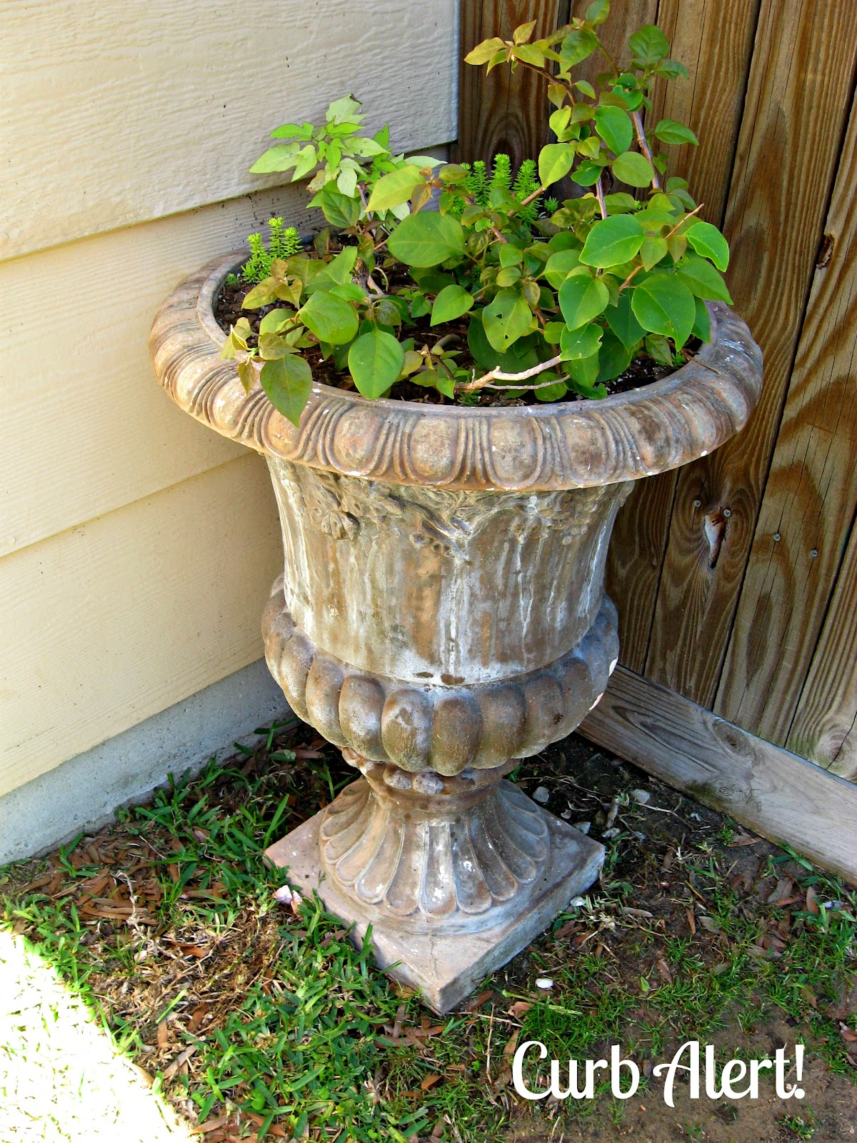 Curb alert outdoor cement planter cement urn Concrete planters